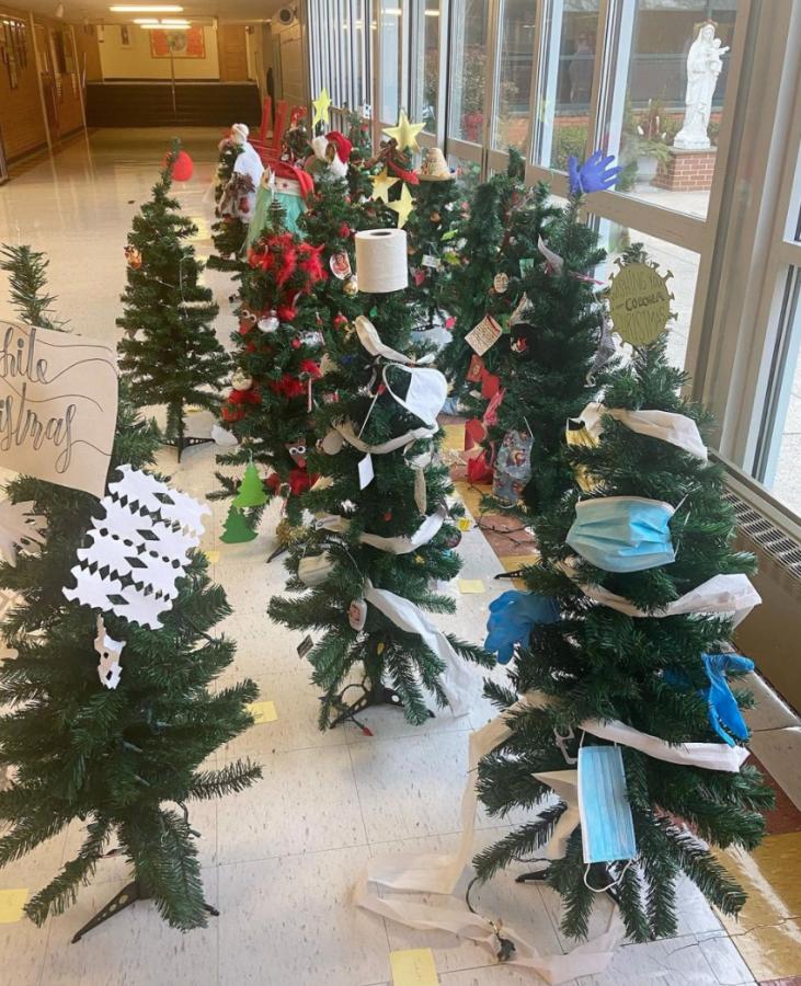 Gwynedd Christmas Tree Competition